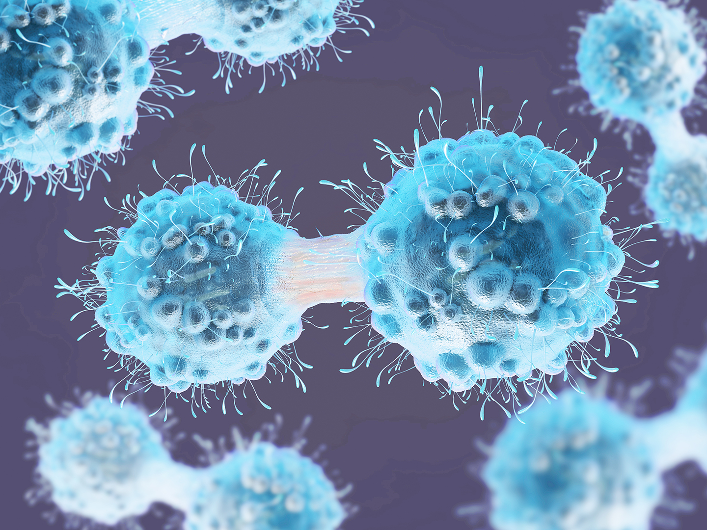 3d illustration of a cancer cell in the process of mitosis